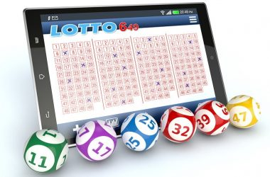 Bluff And Lift Your Bets Online game For Environment